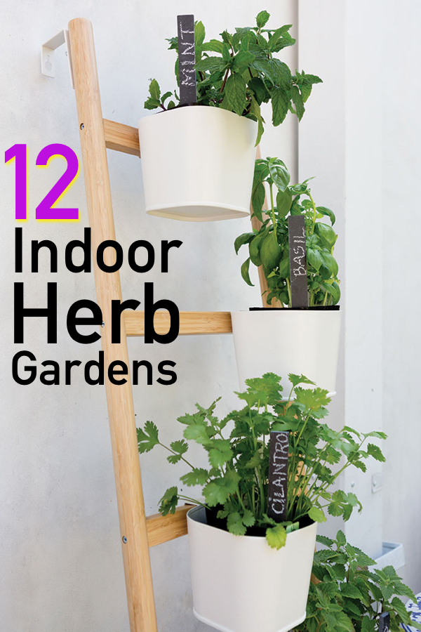 12 Awesome Indoor Herb Garden Ideas